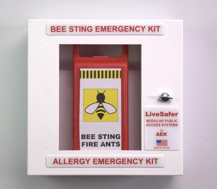 Bee Sting Emergency Kit